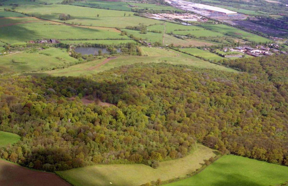 Dunsmore Living Landscape ryton wood