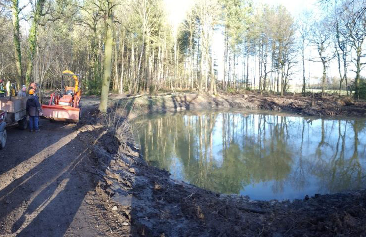 Dunsmore Living Landscape Brandon Wood pond